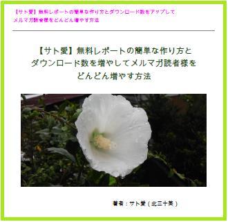無料レポートサト愛(北三十美)「無料レポート簡単な作り方」